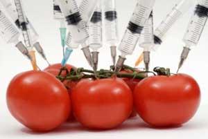 На Украине позволили добавлять в продукты ГМО в 9 раз больше