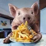 Ради еды живут только свиньи.