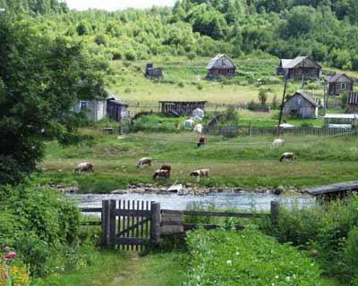 В России осталась своя земля?