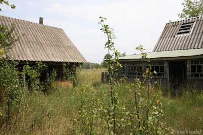 Местная власть в сельской местности