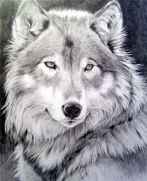Эпохи меняются. Волк прийдёт на смену Лисе.