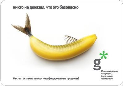 Риск использования ГМО