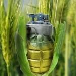 ГМО-крест на потомство!!