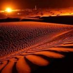 Школа выживания в условиях пустыни