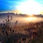 Путь духовного развития в мире Яви