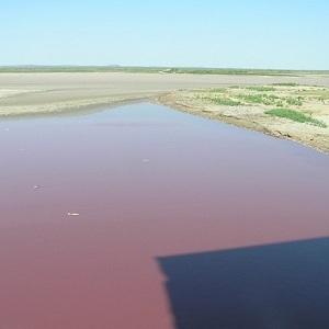 Кровавое озеро в Техасе