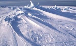 Антарктическая Афера