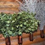 Заготовка и использование веников для бани