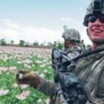 Запад торгует наркотиками, чтобы поправить положение в кризисе