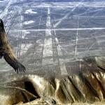 Достояние Планеты: Перфорированная дорога плато Наска. Андрей Жуков