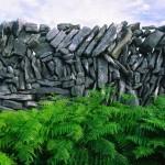 Каменные стены в Ирландии неизвестного происхождения