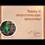 Чакры и энергетические проблемы. Антон Чудин