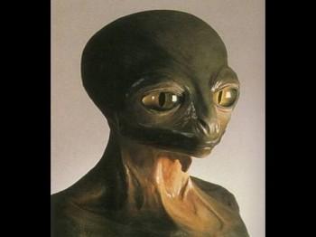 Каталог видов пришельцев. Алексей Трехлебов