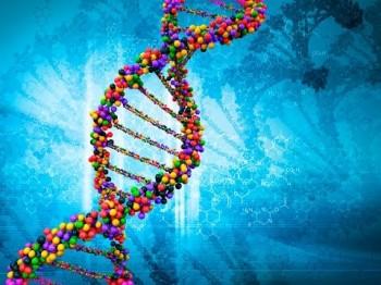 Мощная энергетика зависит от сильной генетики. Георгий Сидоров