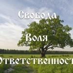 Свобода, воля, ответственность. Сергей Лирин