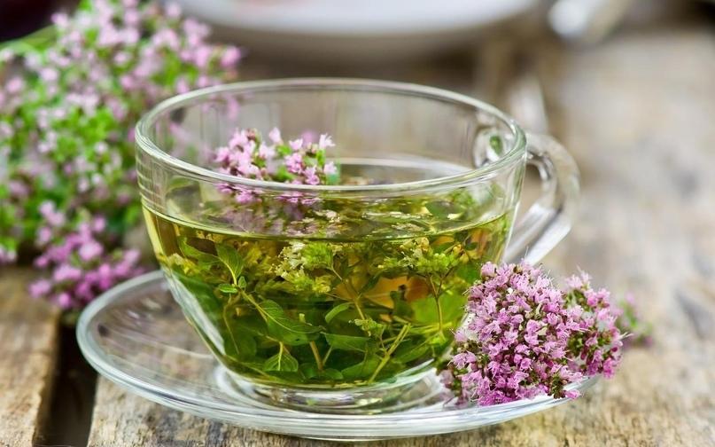 Краткая справка по свойствам травяных чаев