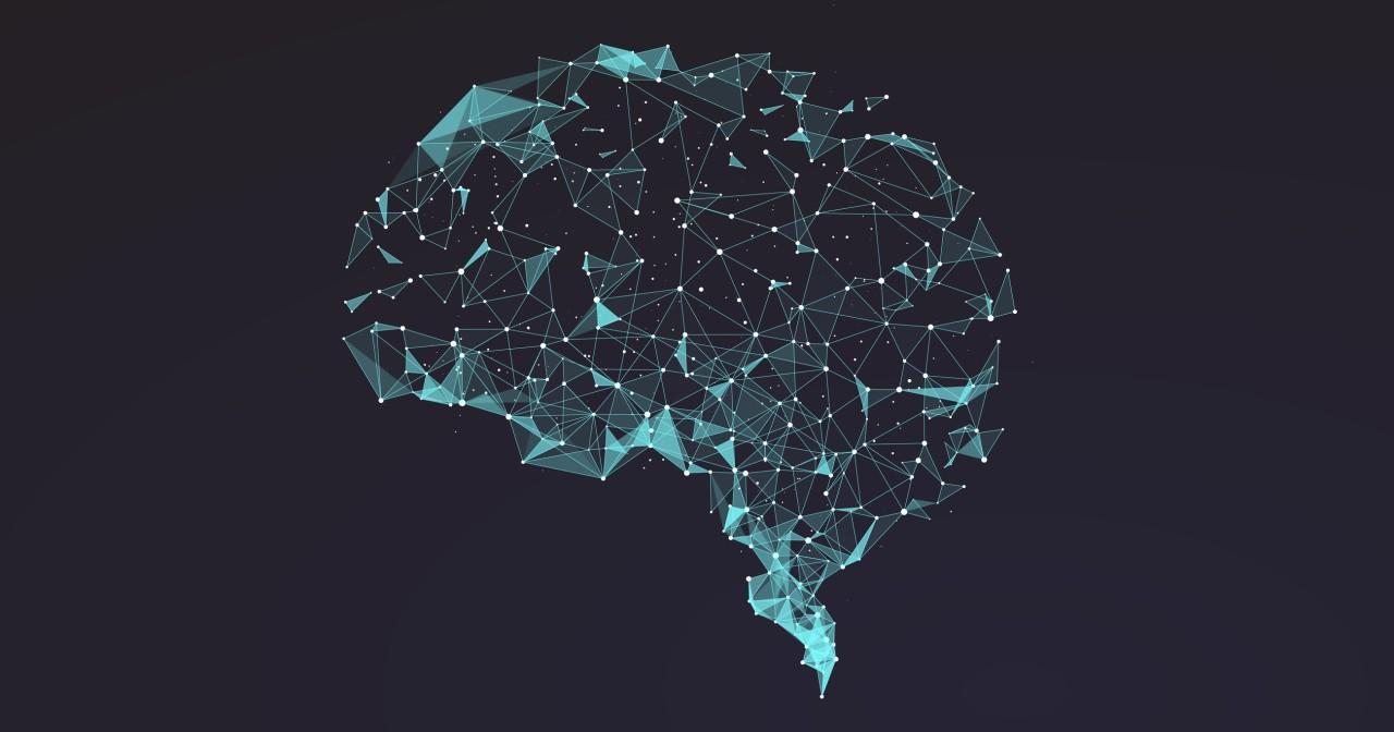 Что хорошо и что плохо нашему мозгу