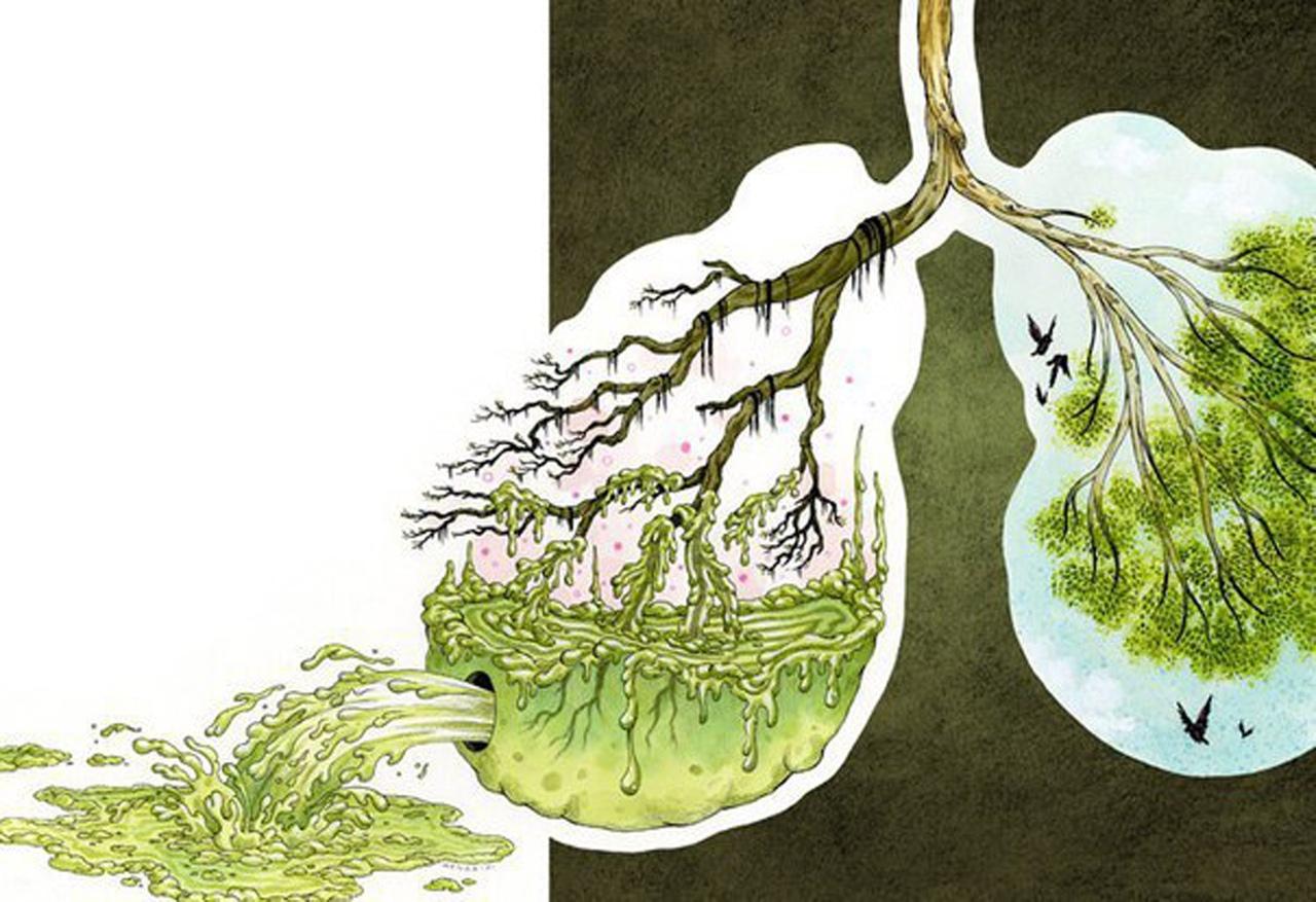 Народные средства для очистки легких