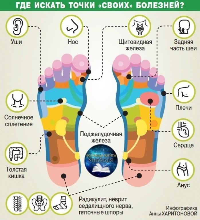 Жизненоважные точки на ногах. Профилактика органов по стопам